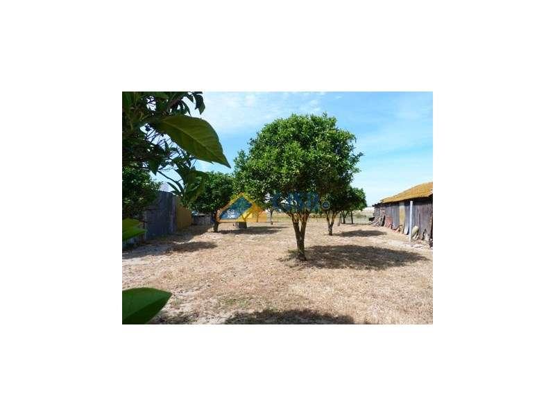 Quintas e herdades para comprar, Samora Correia, Santarém - Foto 43