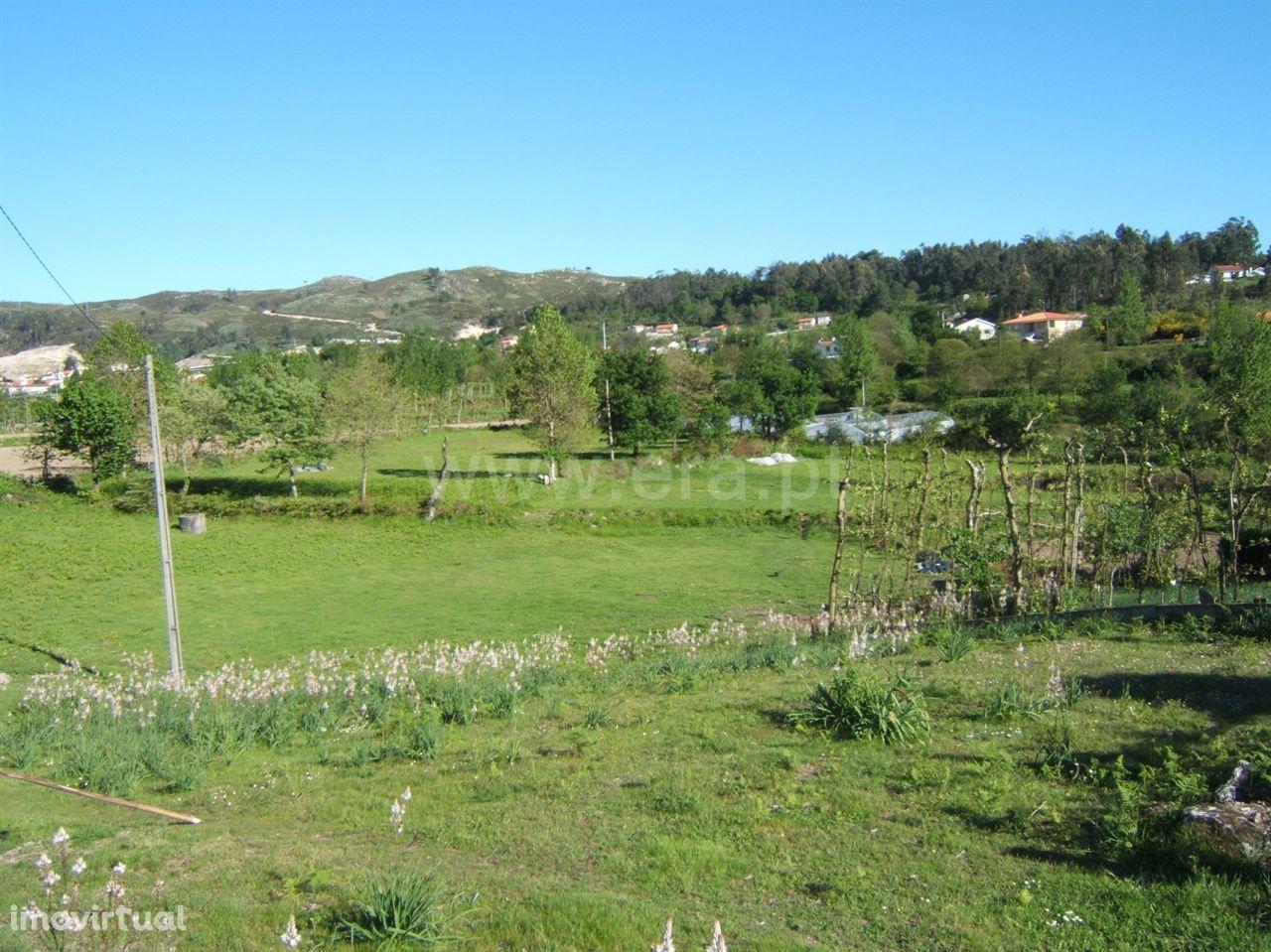 Terreno com 7.500 m2 em Quinchães