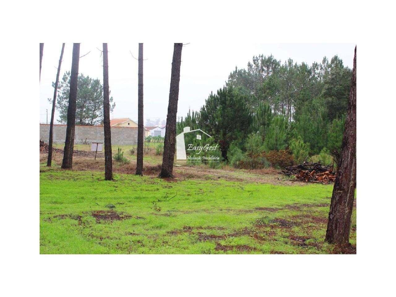 Terreno para comprar, Monte Redondo e Carreira, Leiria - Foto 19