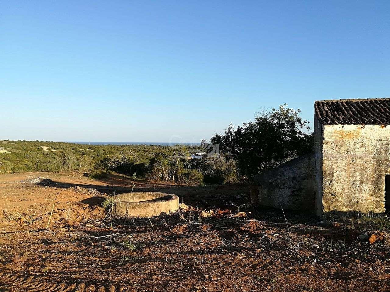 Moradia para comprar, Lagoa e Carvoeiro, Faro - Foto 5