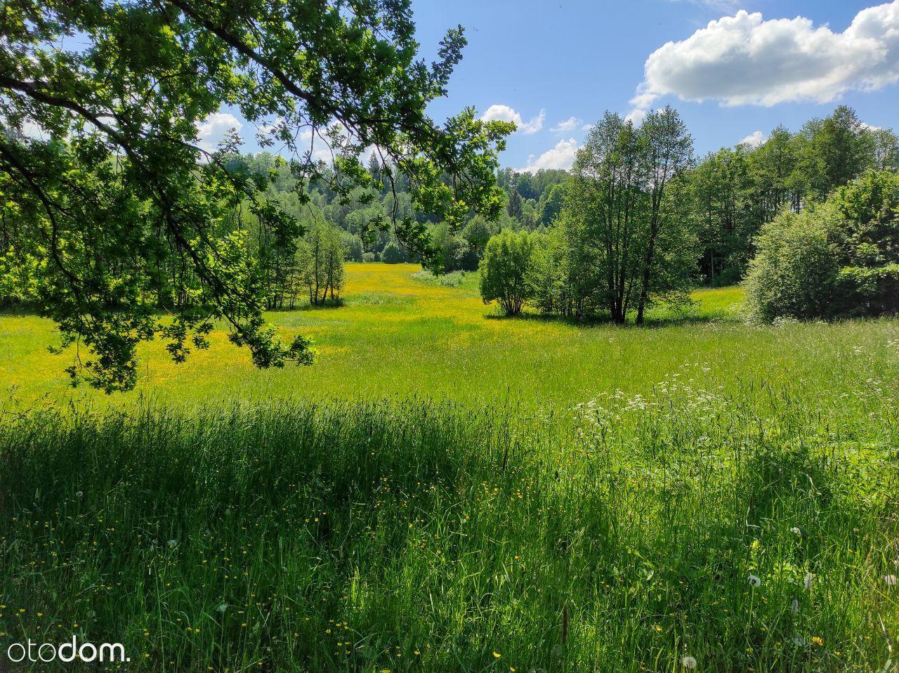 Działka rolna, oaza spokoju.