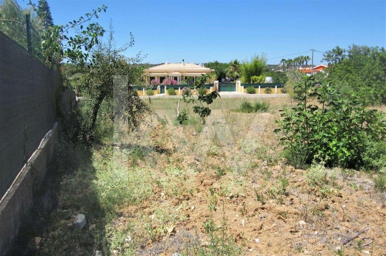 Terreno para comprar, Alcantarilha e Pêra, Silves, Faro - Foto 15