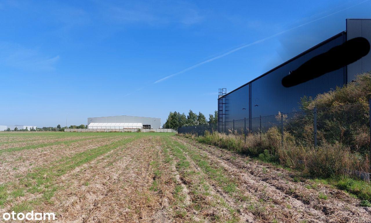 Krzesiny - 3000m2 grunt na firmę. Pełna własność