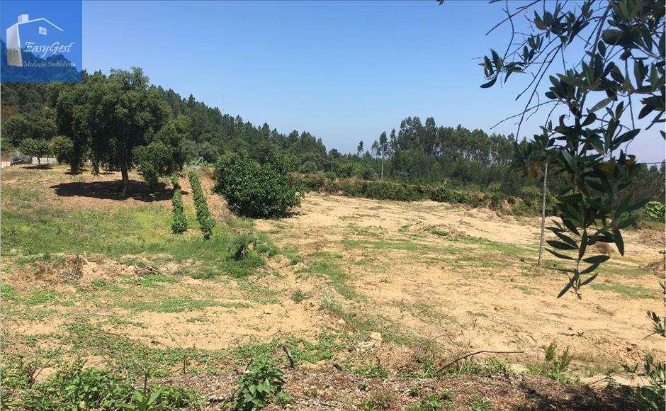 Terreno para comprar, Serra e Junceira, Santarém - Foto 1