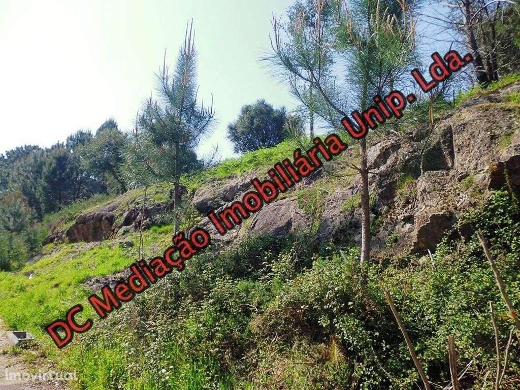 Terreno para comprar, Gualtar, Braga - Foto 10