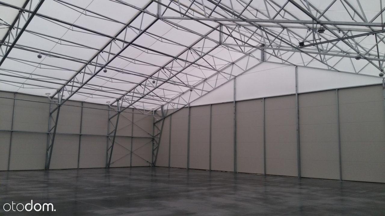Oferta wybudowania i wynajęcia hali namiotowej