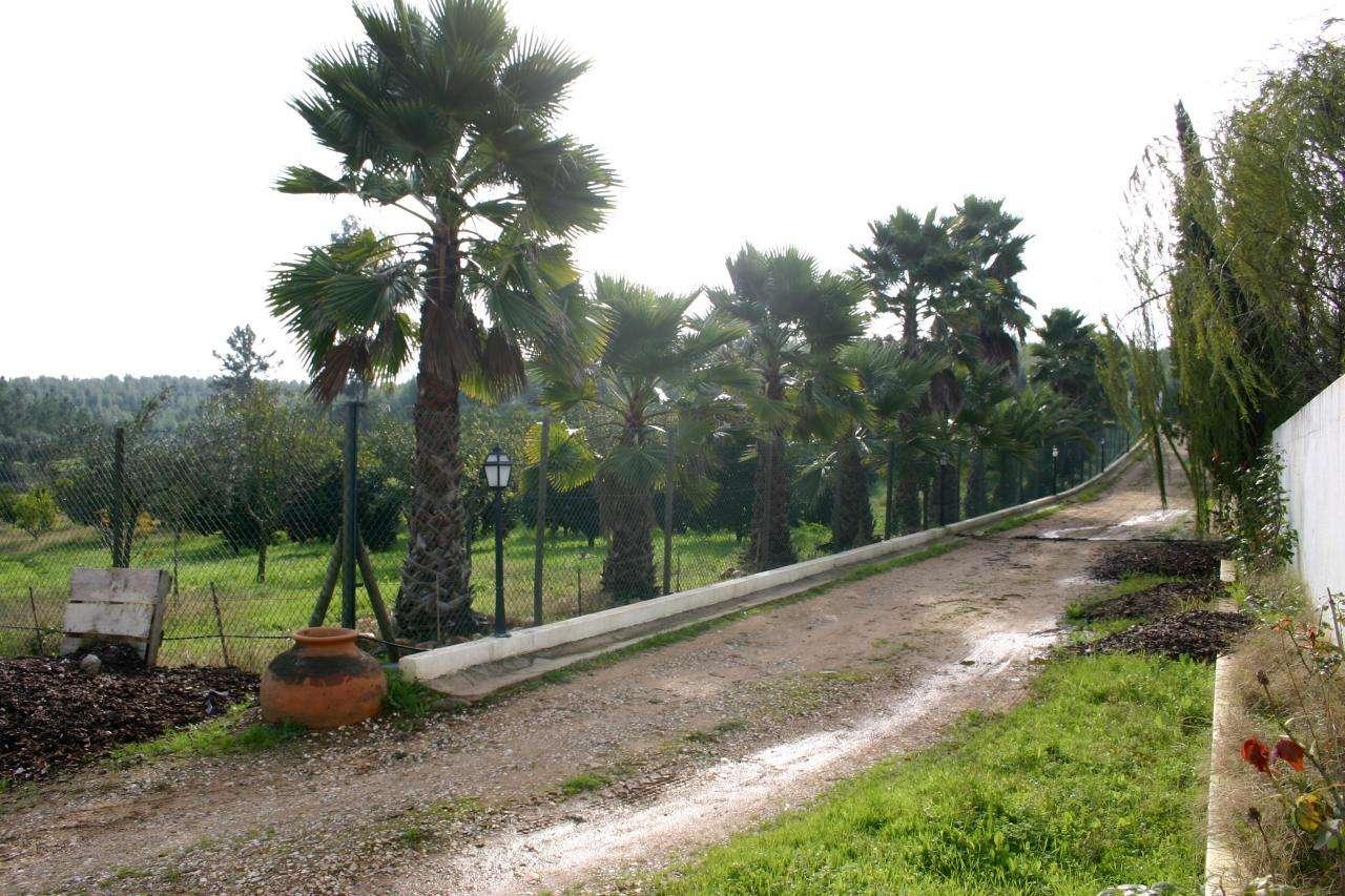 Quintas e herdades para comprar, Praia do Ribatejo, Santarém - Foto 1