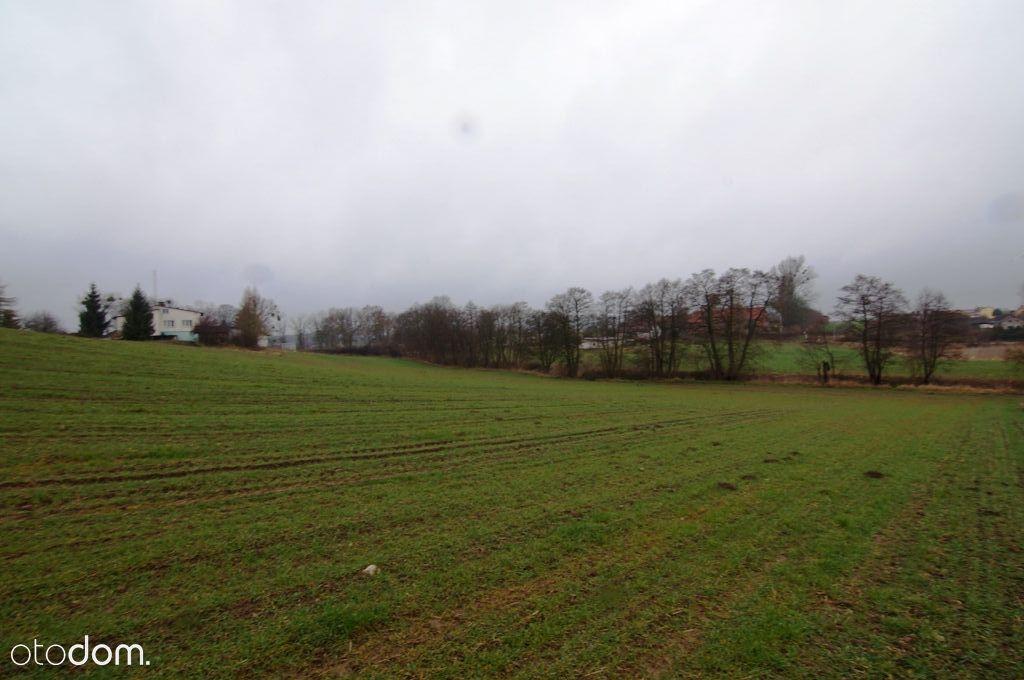 Działka rolna przy drodze głównej w Koniecwałdzie