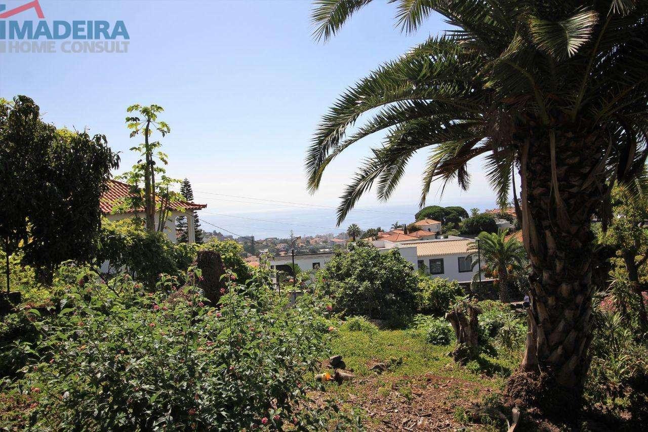Moradia para comprar, São Martinho, Ilha da Madeira - Foto 6