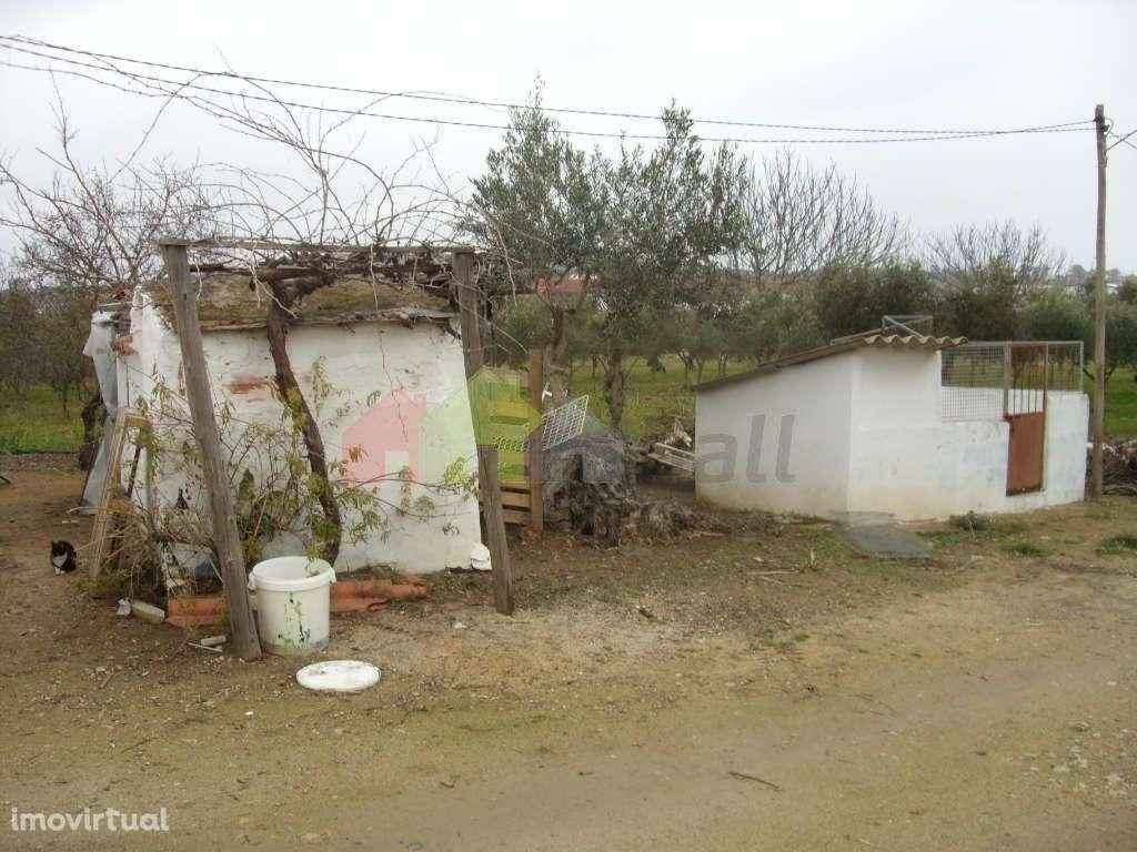 Terreno para comprar, Serpa (Salvador e Santa Maria), Beja - Foto 2