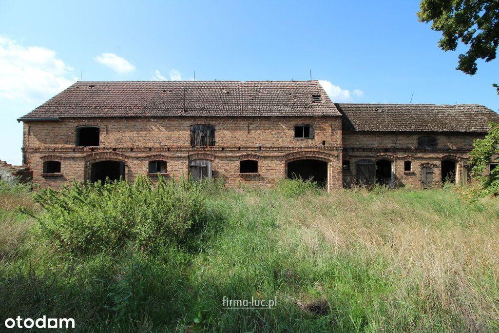 Gospodarstwo w gminie Krzeszyce