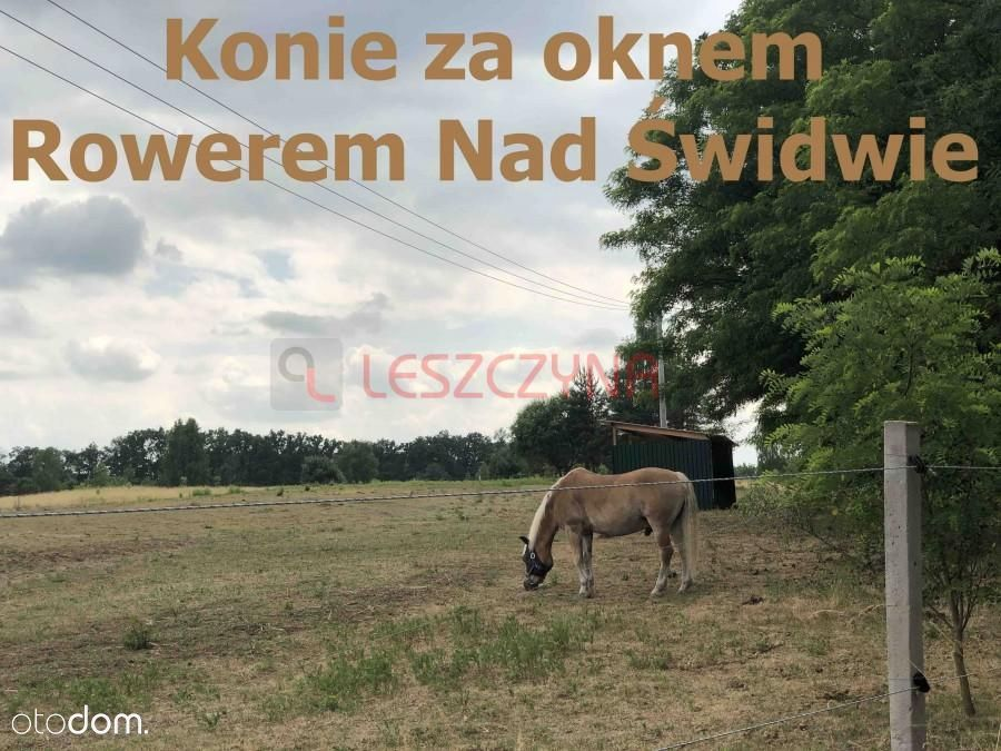ul. Graniczna / Konie / Rezerwat Świdwie