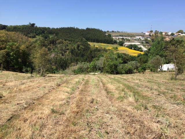 Terreno para comprar, Venda do Pinheiro e Santo Estêvão das Galés, Mafra, Lisboa - Foto 10
