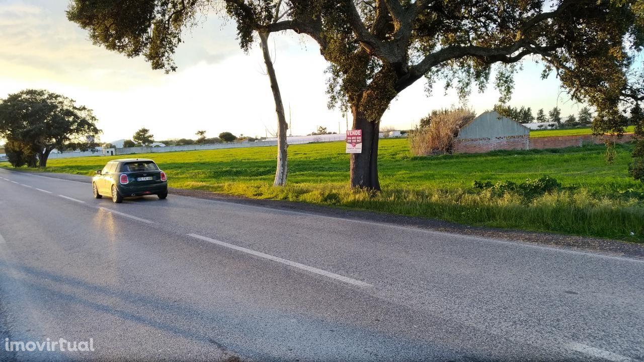 Investimento Terreno 46 250m2 Passil entre Alcochete e Montijo