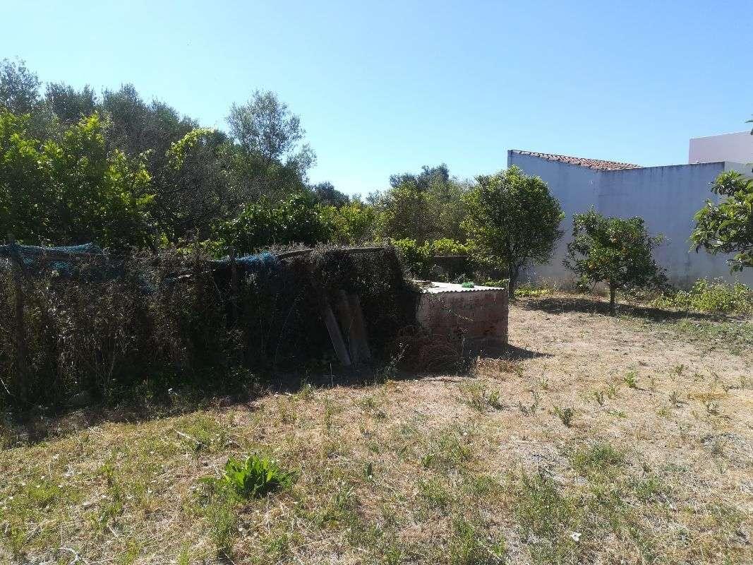 Moradia para comprar, Moncarapacho e Fuseta, Olhão, Faro - Foto 19