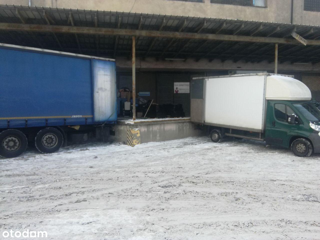 Magazyn 560 i 300 m2 Głogowska 218 Bezpośredni