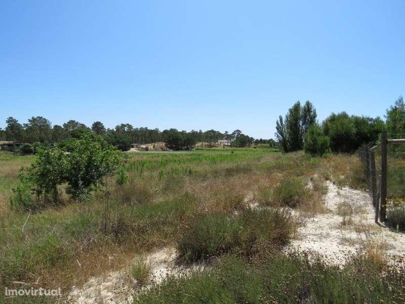Terreno para comprar, Comporta, Alcácer do Sal, Setúbal - Foto 4