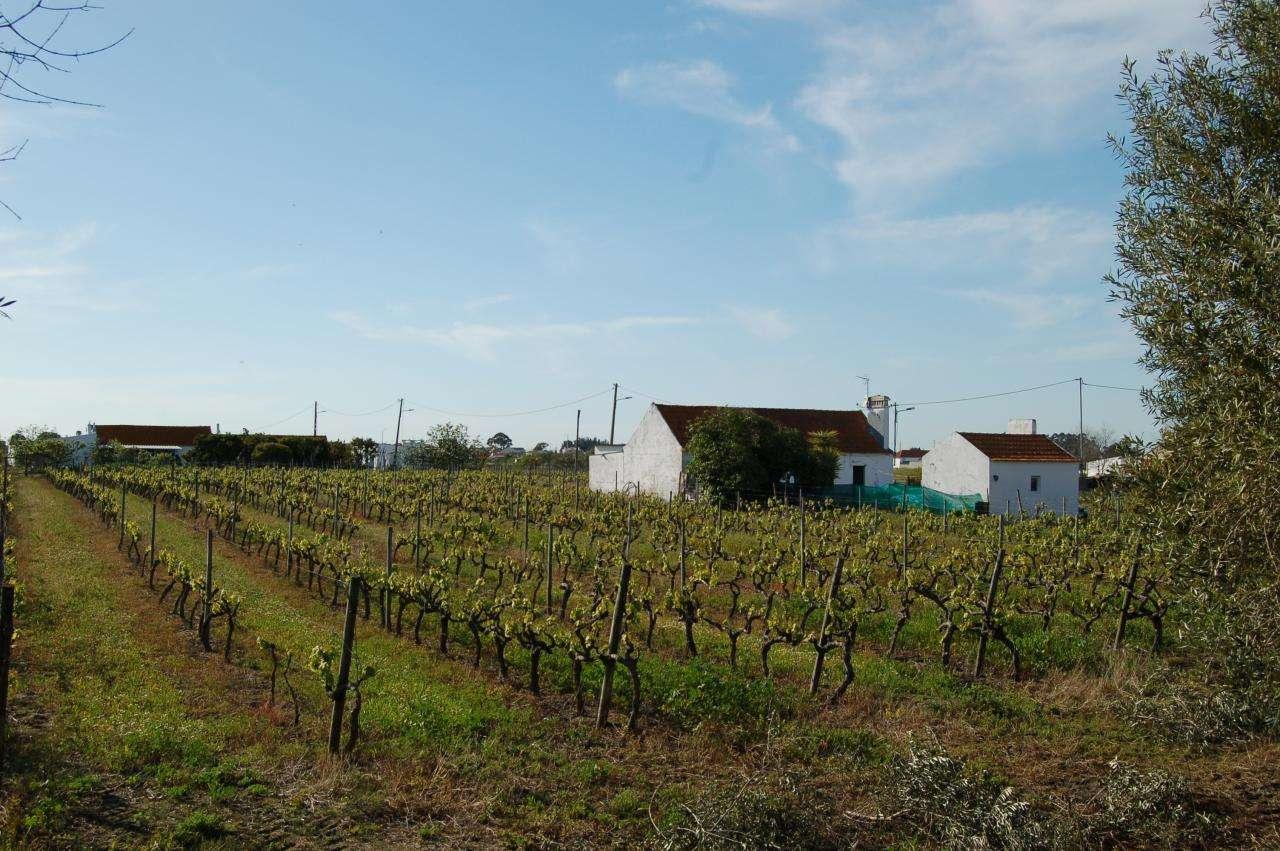 Quintas e herdades para comprar, Pinhal Novo, Setúbal - Foto 7