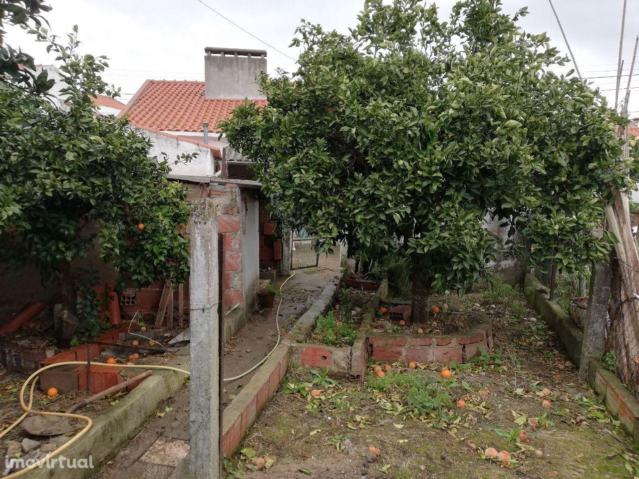 Monte Trigo, casa térrea T3 com quintal