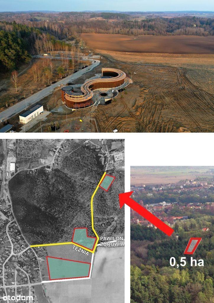 Działka, 5 099 m², Lidzbark Warmiński