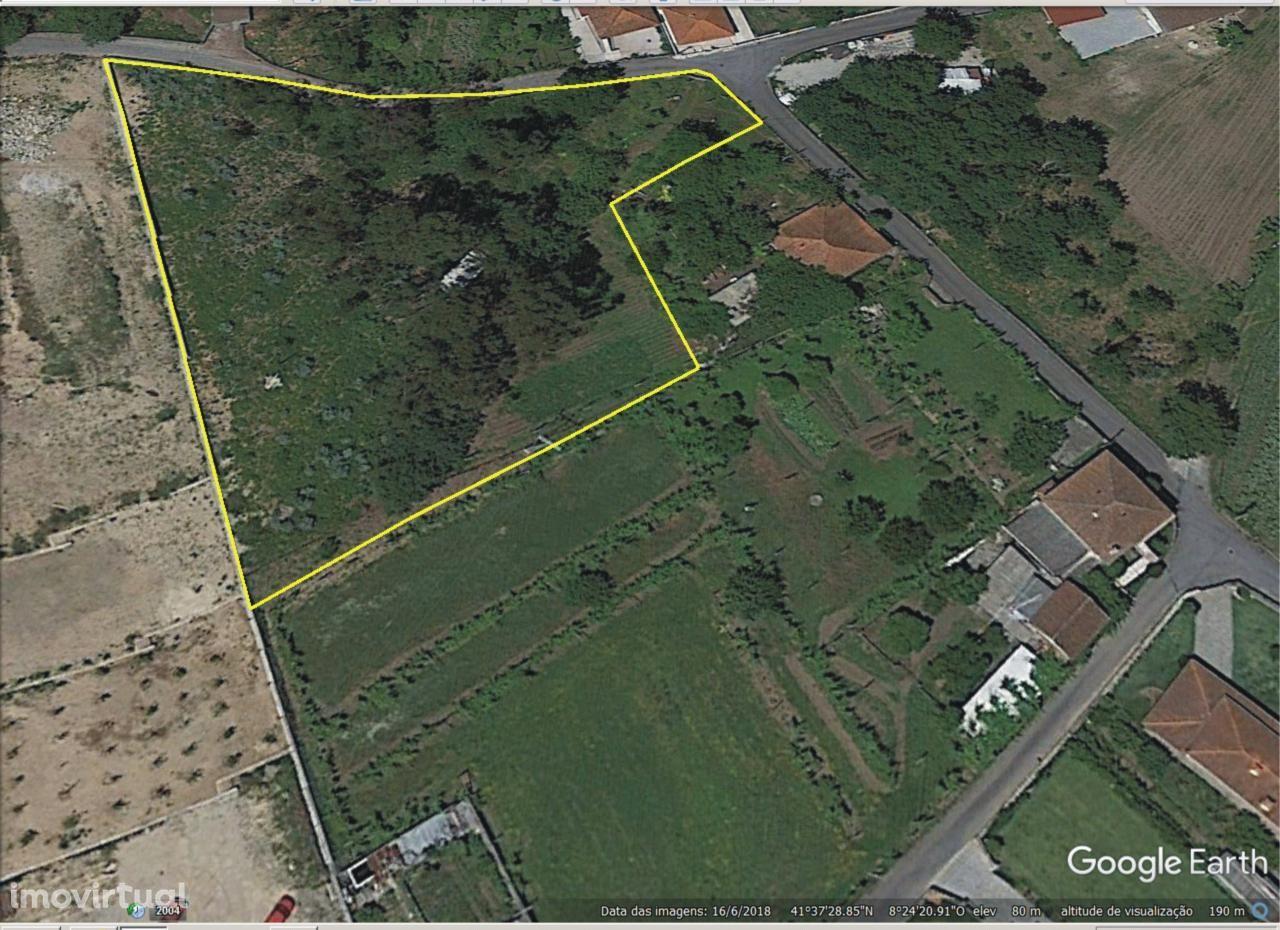 Terreno urbanizável com 3.300 m2  a 10 minutos da cidade de Braga.