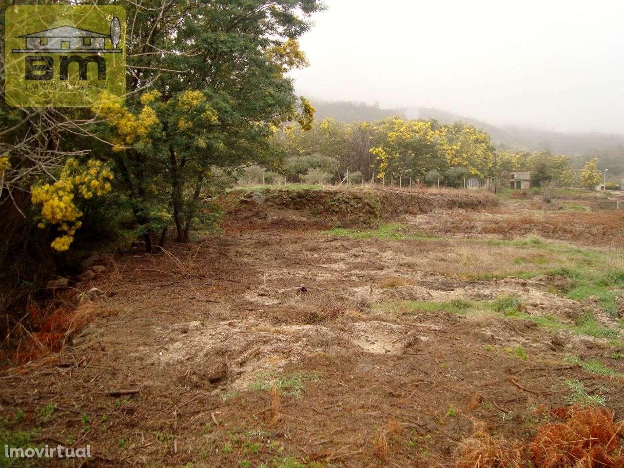 Quintas e herdades para comprar, Almaceda, Castelo Branco - Foto 16