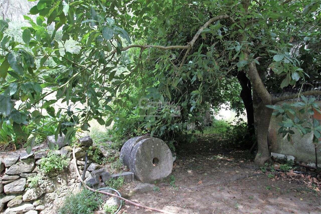 Quintas e herdades para comprar, Alcabideche, Cascais, Lisboa - Foto 12