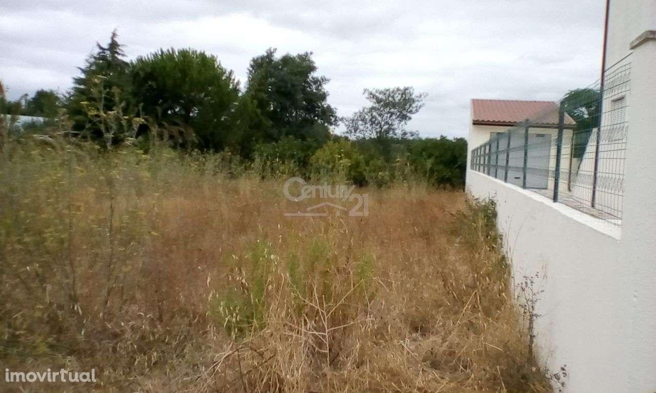 Terreno para comprar, Riachos, Santarém - Foto 2