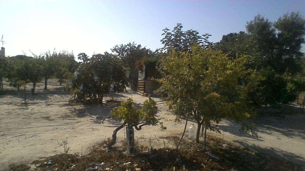 Quintas e herdades para comprar, Poceirão e Marateca, Setúbal - Foto 27