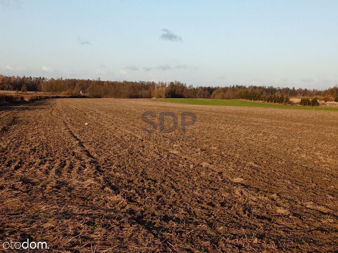 Działka rolna 5,38 ha w ciągłej uprawie