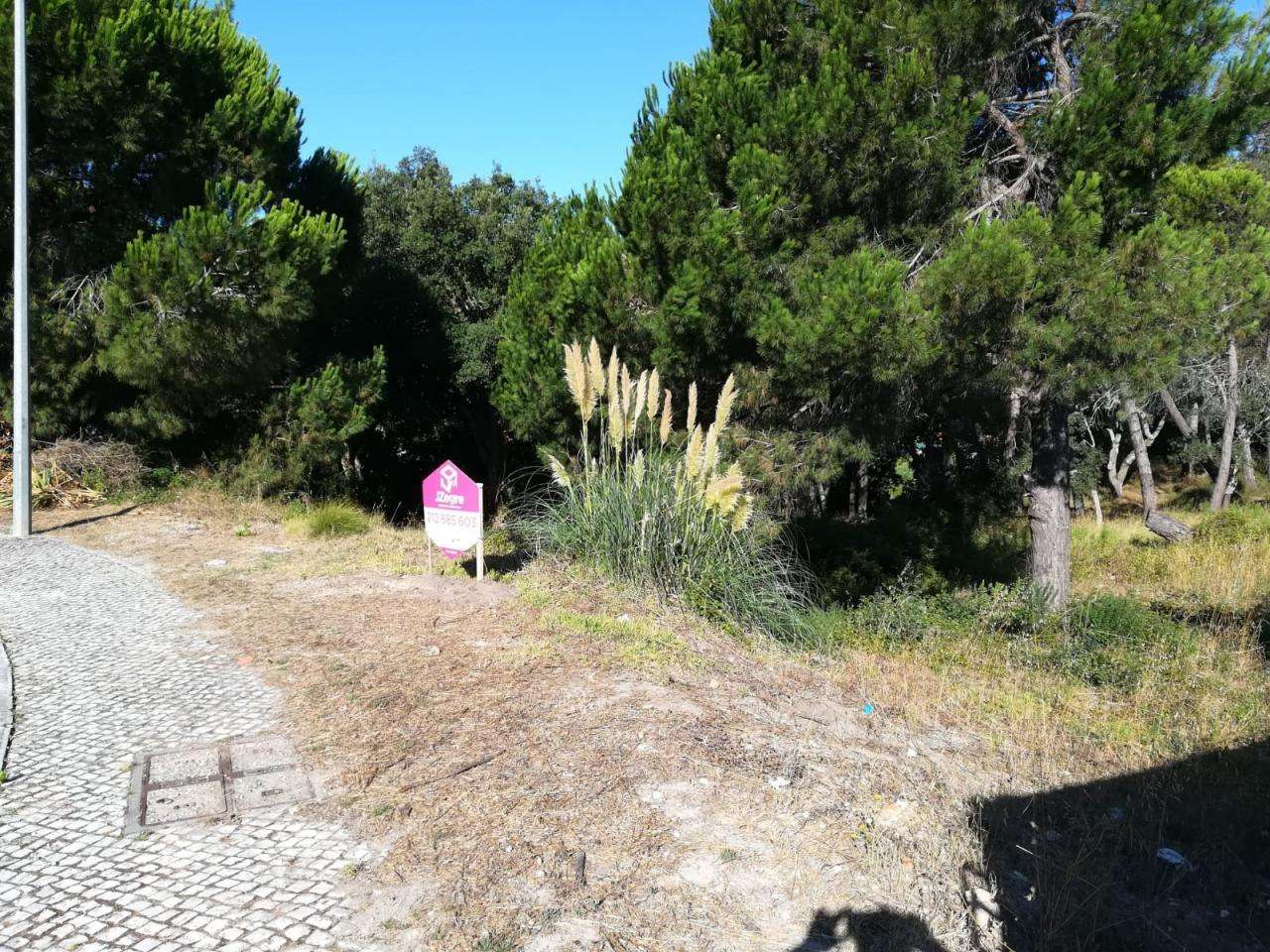 Terreno para comprar, Castelo (Sesimbra), Setúbal - Foto 3