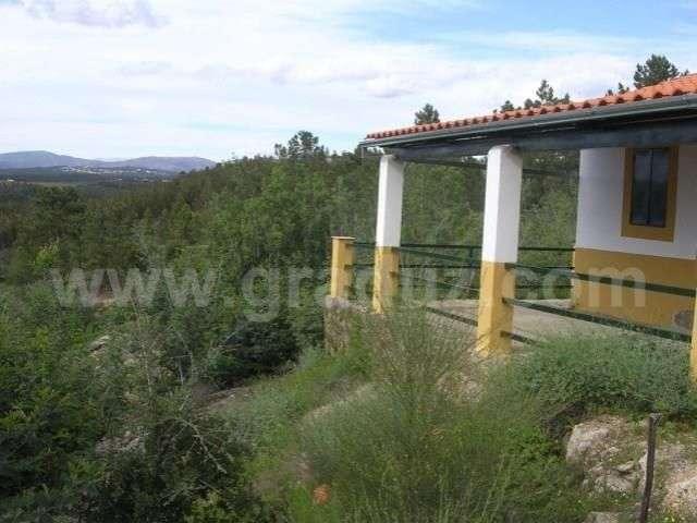 Terreno para comprar, Tinalhas, Castelo Branco - Foto 5