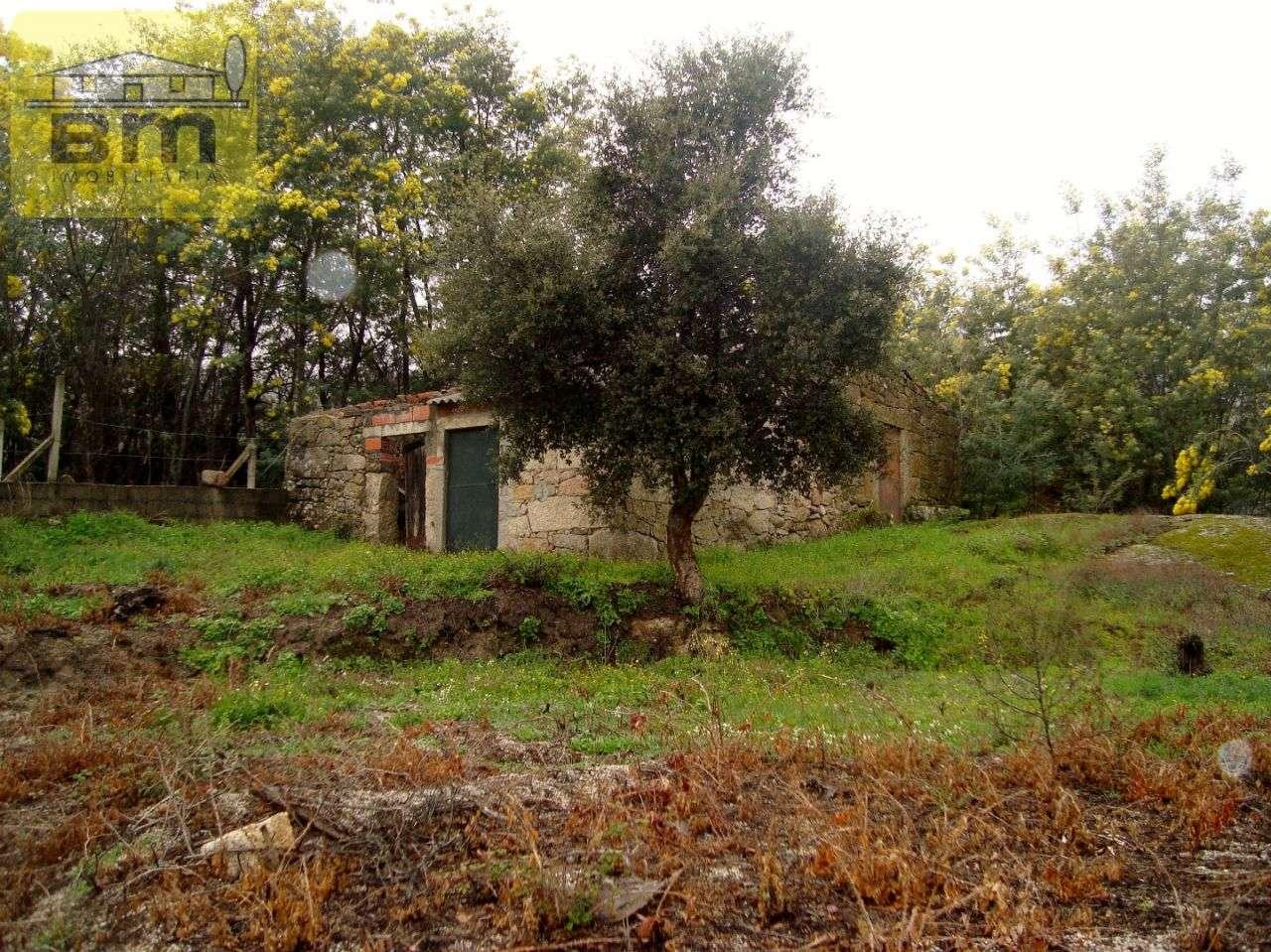 Quintas e herdades para comprar, Almaceda, Castelo Branco - Foto 10