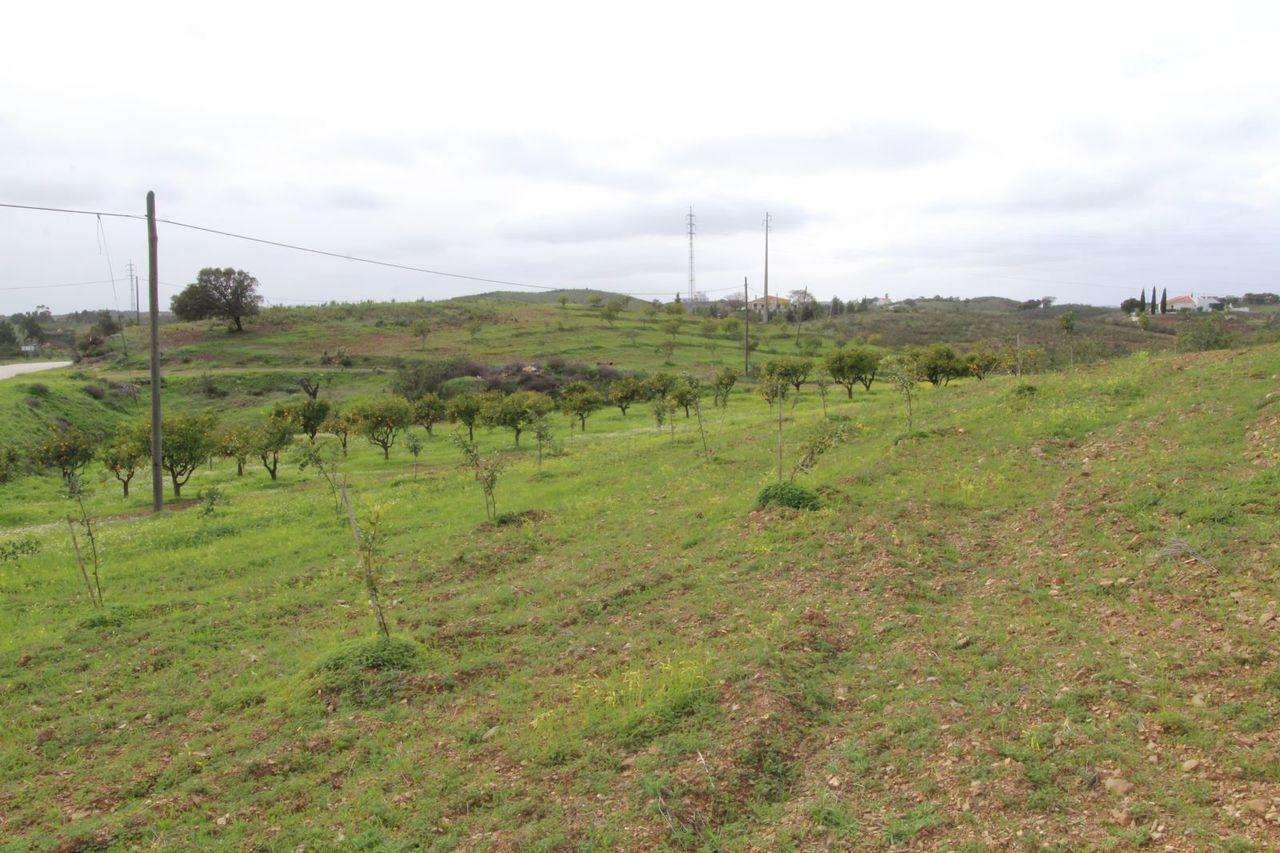 Terreno para comprar, Castro Marim - Foto 5