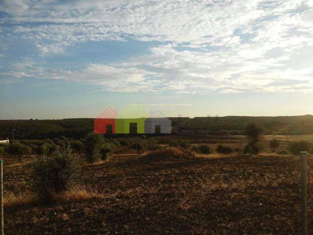 Quintas e herdades para comprar, Selmes, Vidigueira, Beja - Foto 8