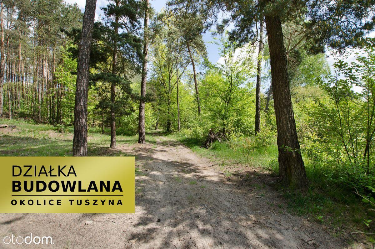 Działka na skraju Tuszyńskiego lasu
