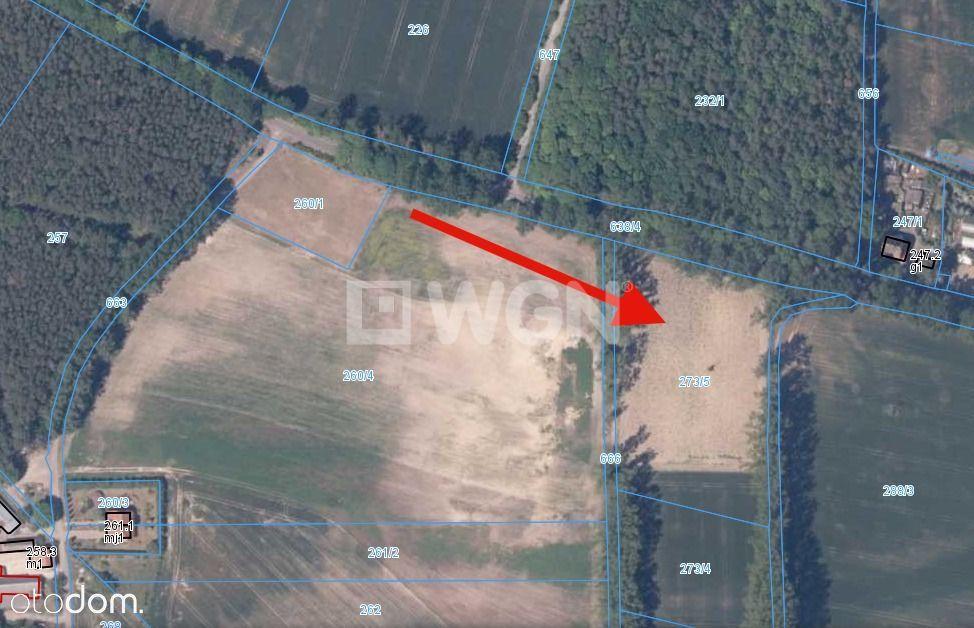 Działka, 10 920 m², Kołczewo