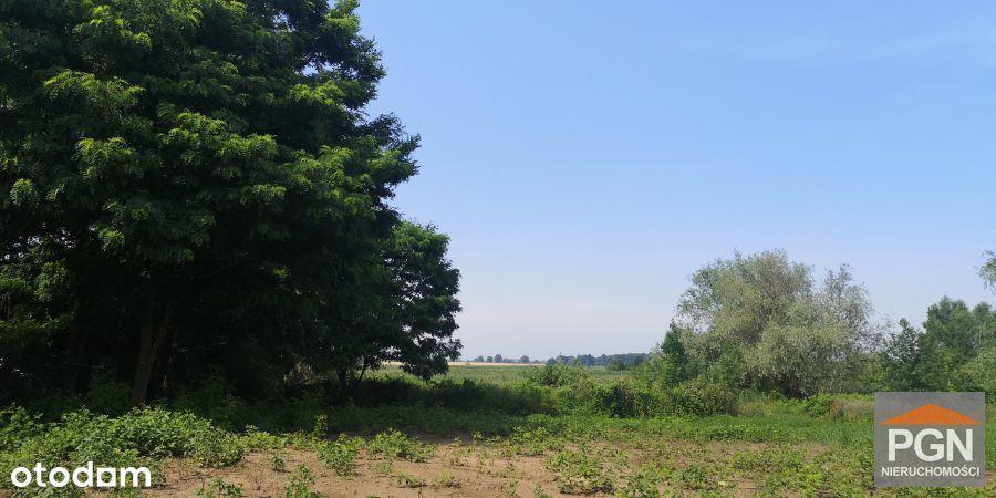 Duża działka siedliskowa nad brzegiem Zalewu Kamie