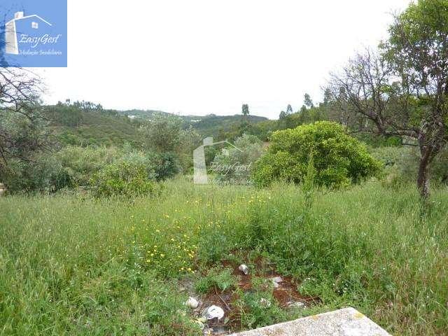 Quintas e herdades para comprar, Martinchel, Abrantes, Santarém - Foto 22