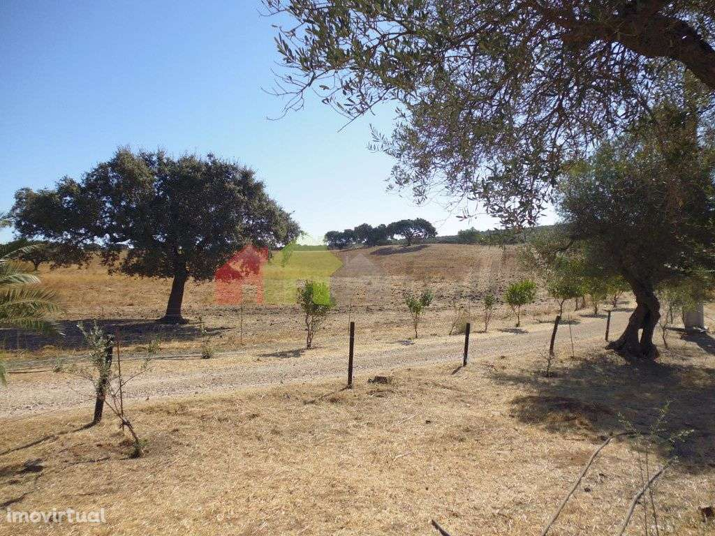 Quintas e herdades para comprar, Vila Verde de Ficalho, Beja - Foto 11