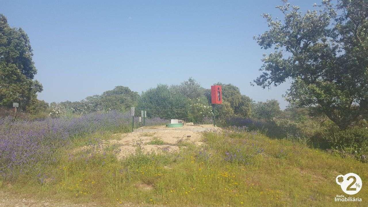 Quintas e herdades para comprar, Vimieiro, Arraiolos, Évora - Foto 31