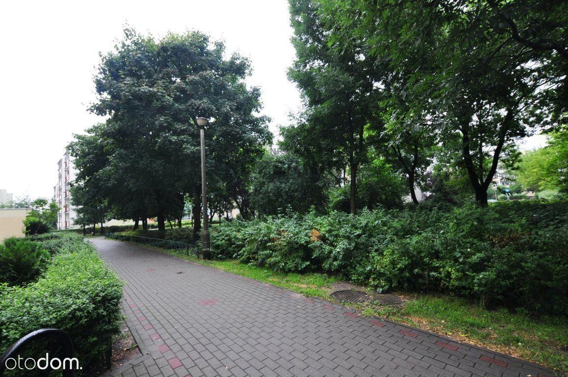 3pokojowe rozkładowe mieszkanie w zielonej okolicy