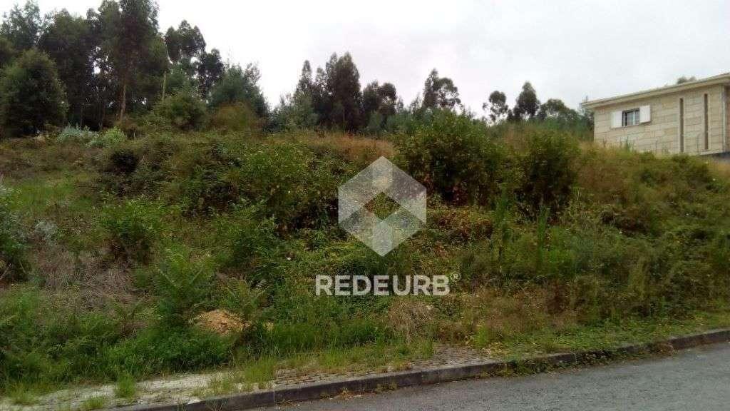 Terreno para comprar, Palmeira, Braga - Foto 2