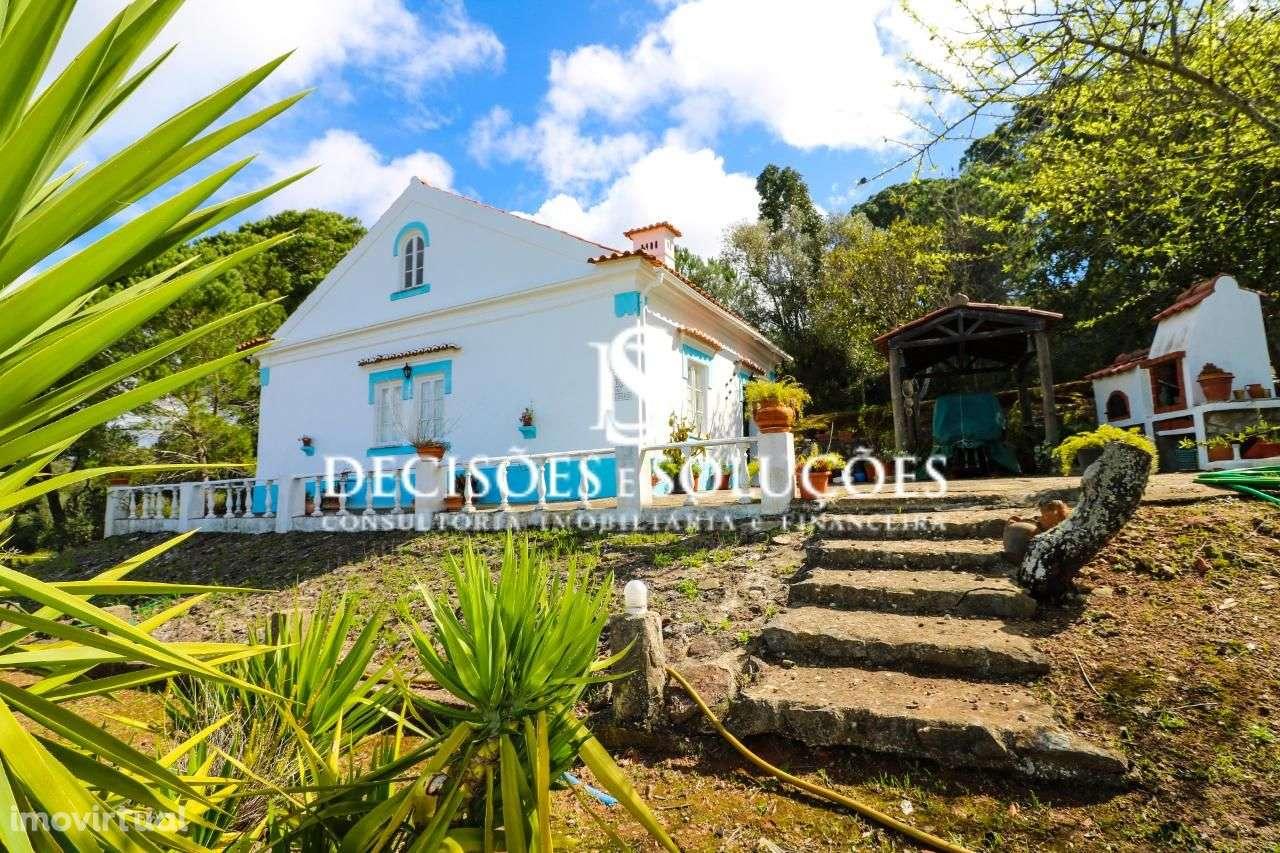 Quintas e herdades para comprar, Santiago do Cacém, Santa Cruz e São Bartolomeu da Serra, Santiago do Cacém, Setúbal - Foto 2