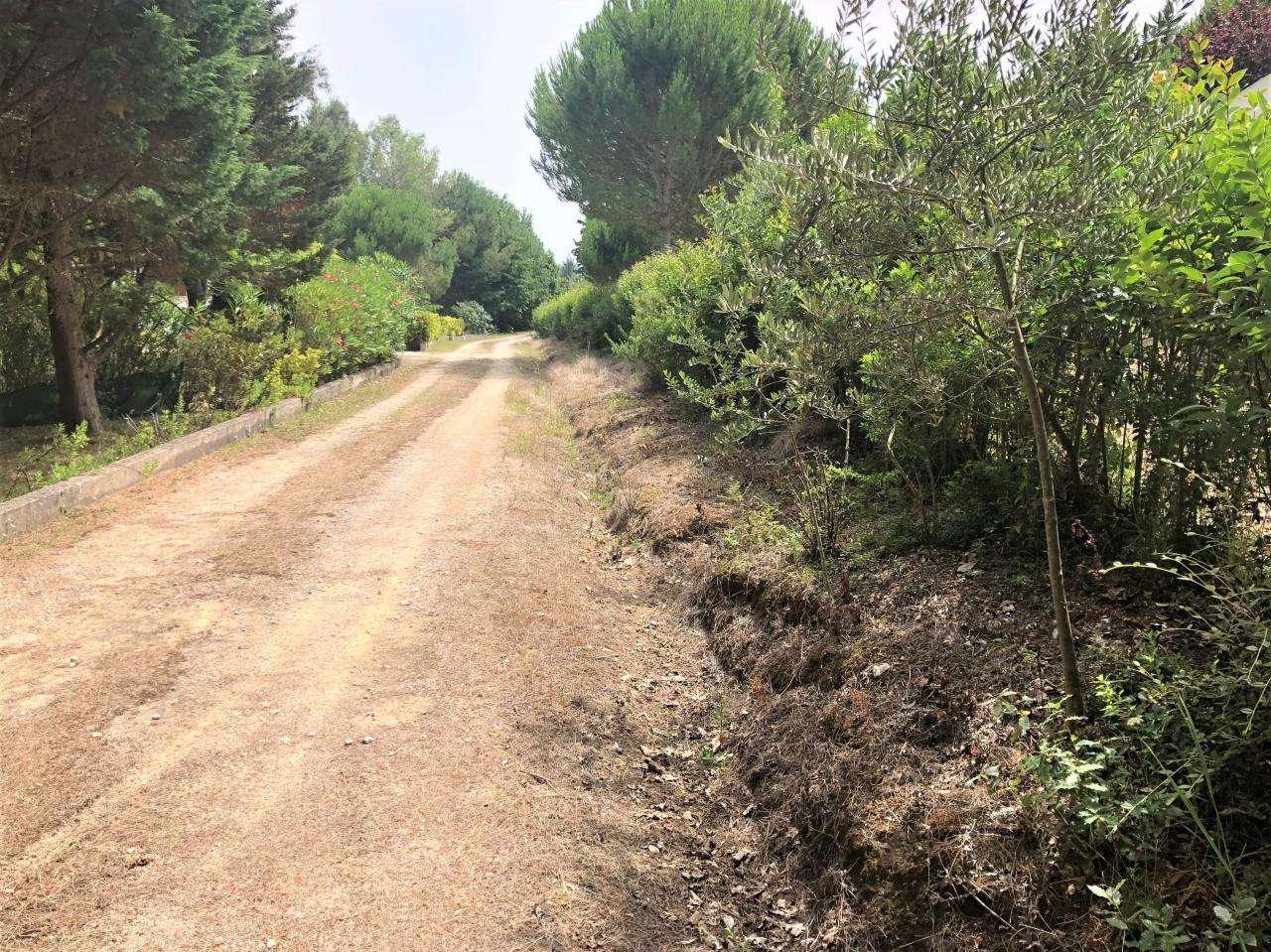 Quintas e herdades para comprar, Parceiros e Azoia, Leiria - Foto 12