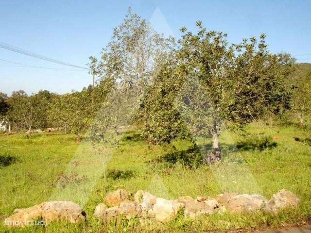 Terreno para comprar, Querença, Tôr e Benafim, Faro - Foto 3