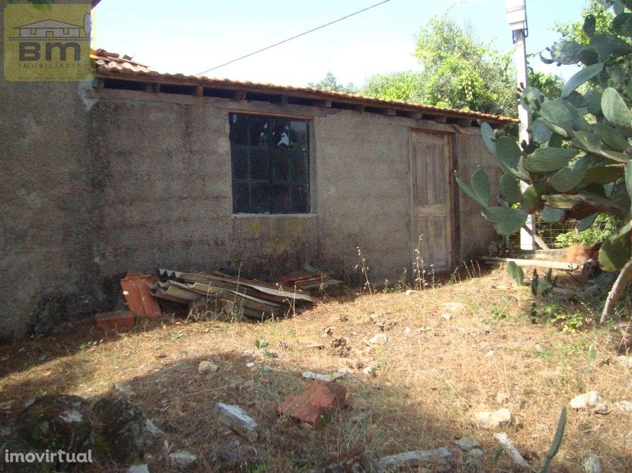 Quintas e herdades para comprar, Almaceda, Castelo Branco - Foto 19