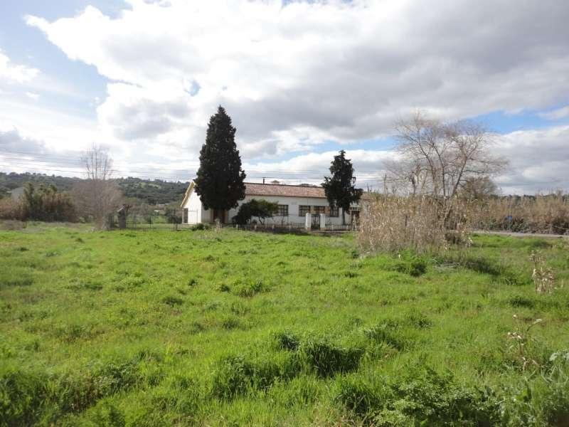 Quintas e herdades para comprar, São Miguel do Rio Torto e Rossio Ao Sul do Tejo, Abrantes, Santarém - Foto 3