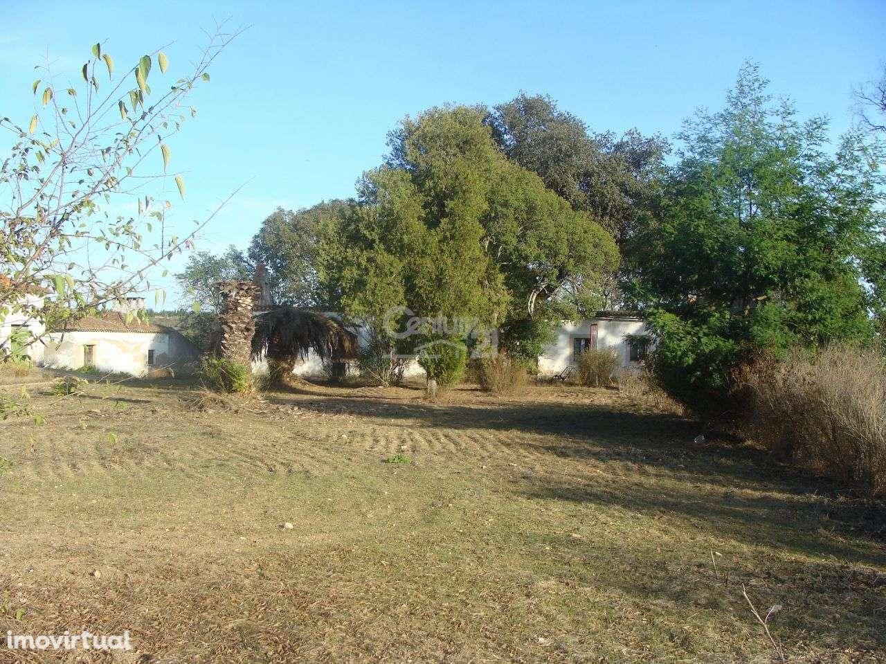 Quintas e herdades para comprar, Alcanhões, Santarém - Foto 9