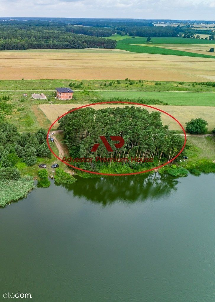 Działki leśne przy linii brzegowej Zalewu Radzyny!
